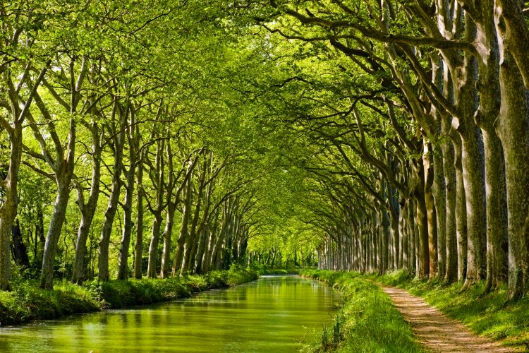 Late spring look on Canal du Midi canal in Toulouse, southern France