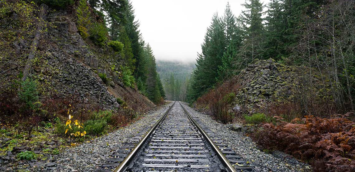 Railway tracks through the woods.