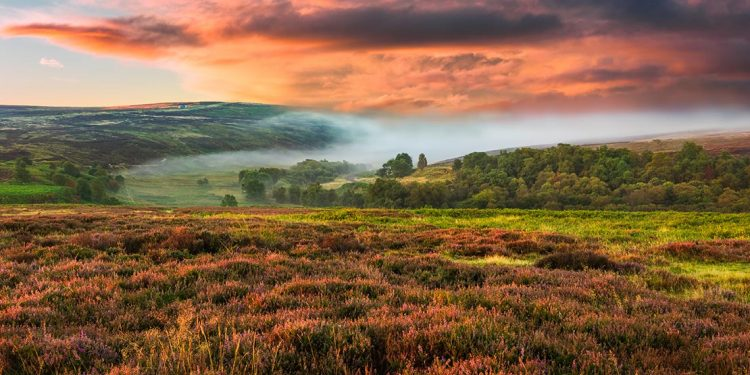 Moors with mist and a red sky.