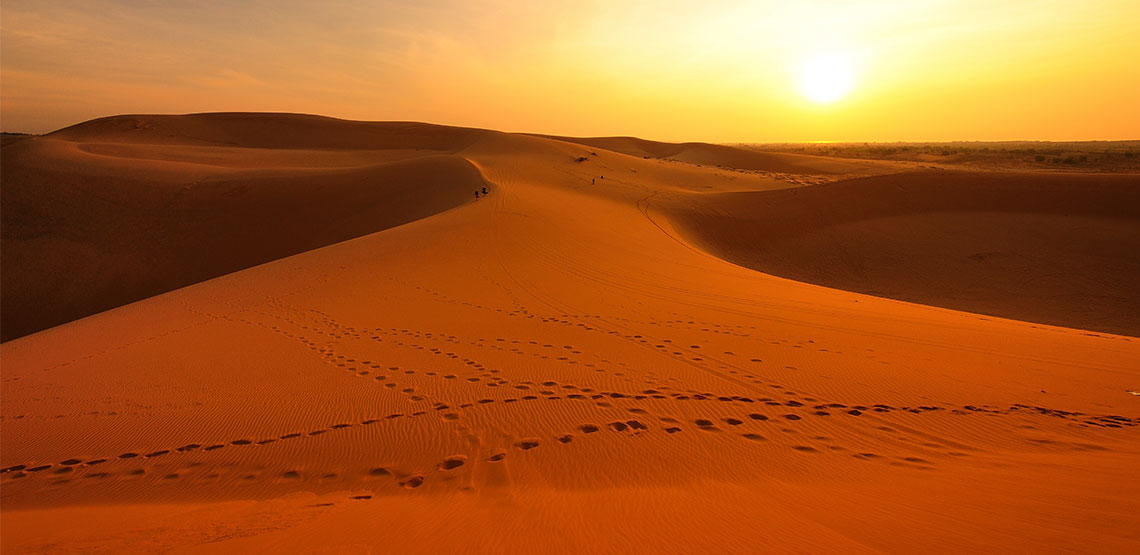 footprints in the sand of the Sahara Desert