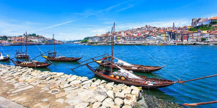 fishing boats docked at a Portuguese waterfront