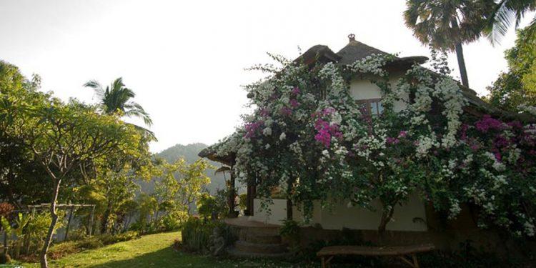 gaia oasis retreat resort bali