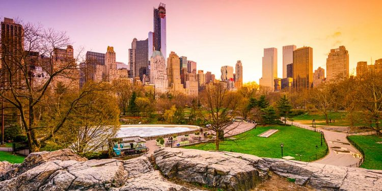central park in New York City at sunrise