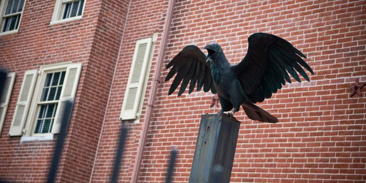 metal statue of a crow