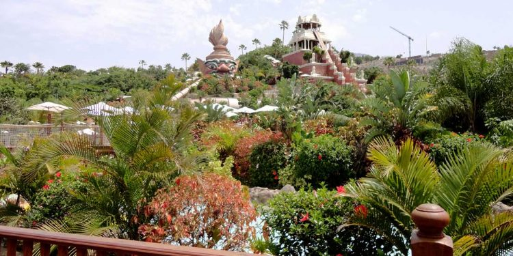 Canary islands vacation 8 things to do for an incredible for At siam thai cuisine orlando