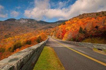 road winding through hills with autumn foliage
