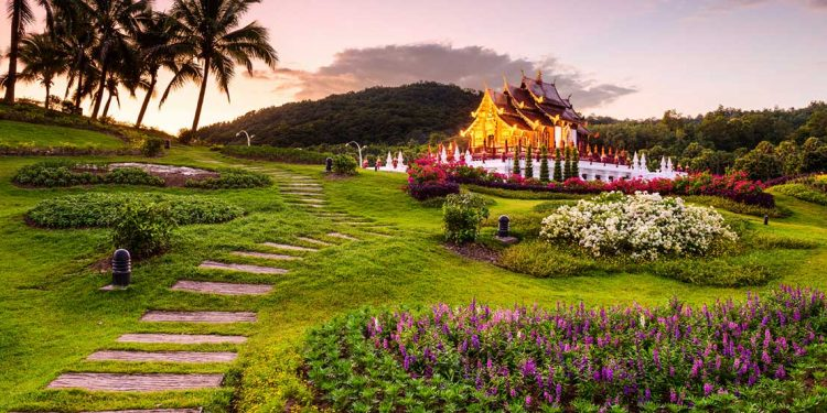 charming garden in chiang mai, thailand at sunset