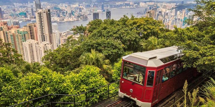 A tram-train with numerous trees surrounding the vehicle is overlooking a city landscape