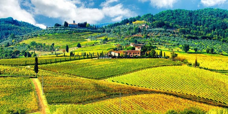 The Italian country side is covered with fields of crops and abundance of nature