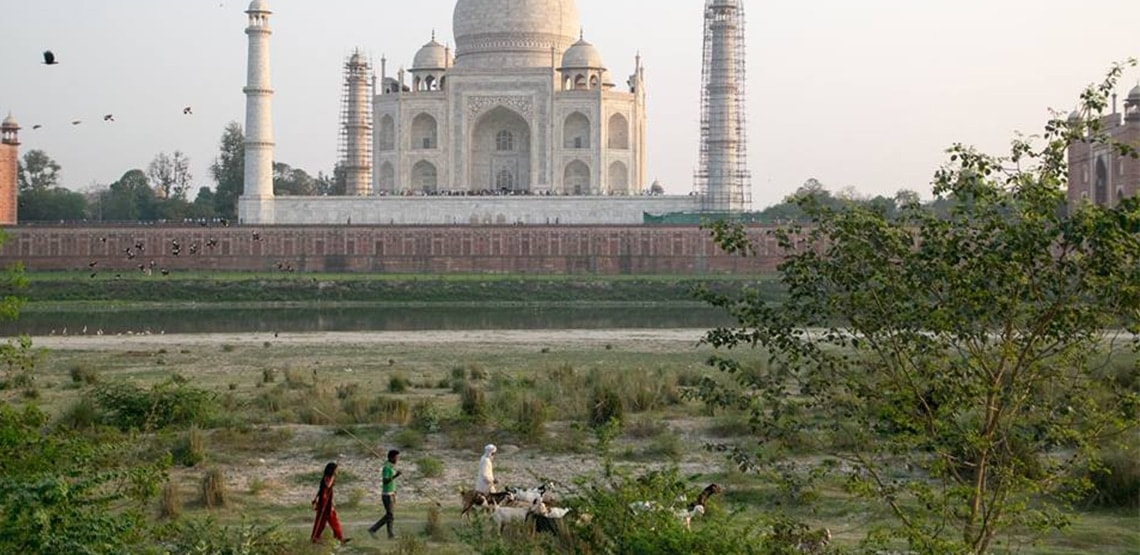 Three people with a small herd of goats walk in front along flat ground with Taj Mahal in the background, behind a wall.