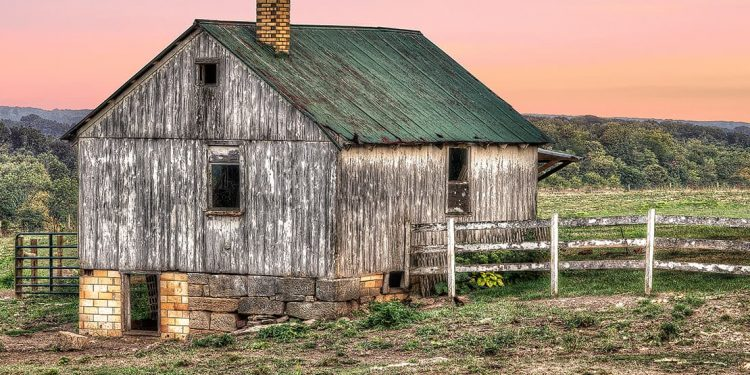 A paint stripped barn with a green roof standing resolutely in a field.