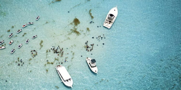 Aerial view of boats and stingrays in water