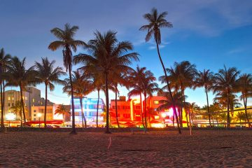 A beach in the foreground with palm trees in the middle ground and buildings in the background lit up with colored lights.