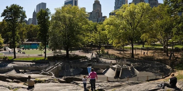 A playground and skate park in Central Park.