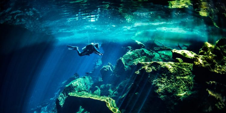Diver exploring the underground cenotes in Cancun