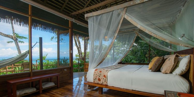 Inside a screened room with a canopy bed and hammock outside.