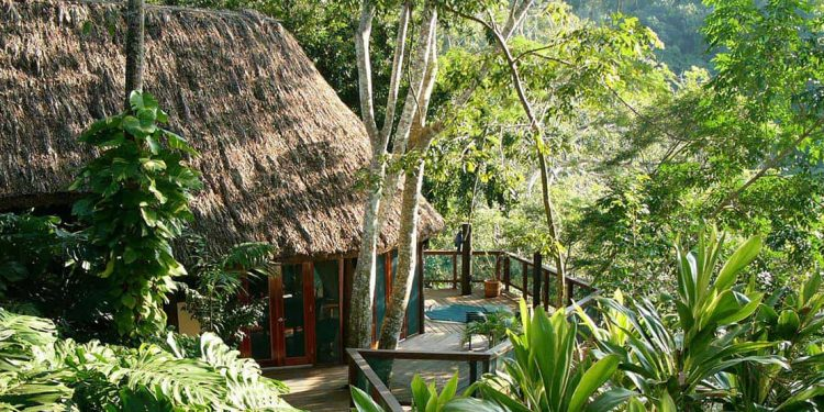Thatched roof cottage in the jungle.