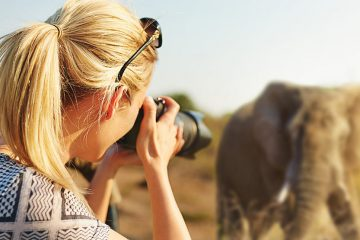 A woman takes a photo of an elephant