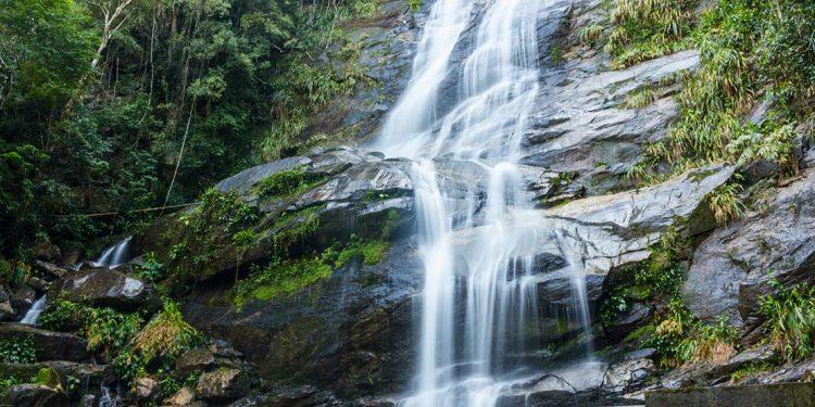 A waterfall in tijuca national park rio de janeiro