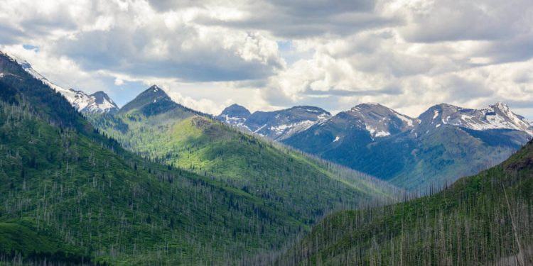 Valley in Montana, United states