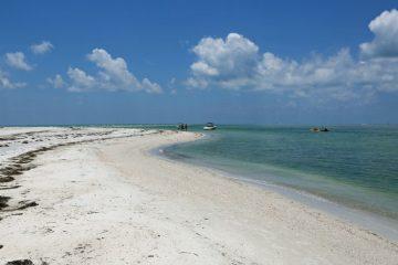 Beach in Caladesi Island State Park