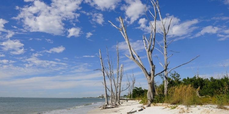 Beach in Lover's Key, Florida
