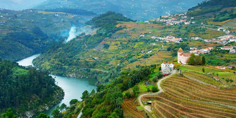 View of Douro river, wineyards and villages on a hills.