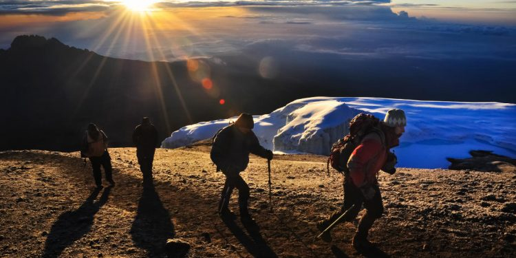 hikers climb kilimanjaro at sunrise