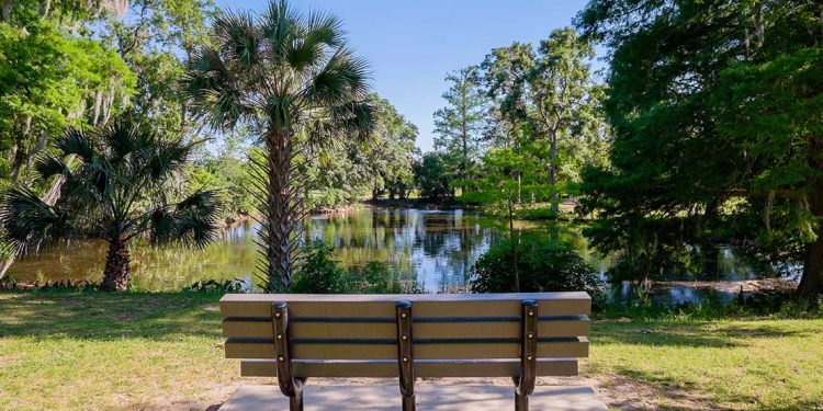 Park bench overlooking pond