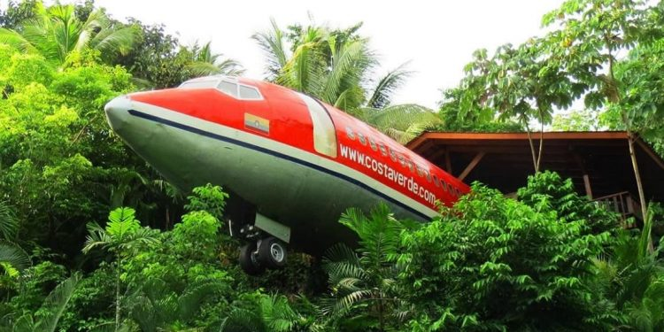 Fuselage sticking out of trees with cabin in background.