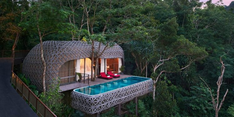 Treehouse hotel in trees with private pool and balcony