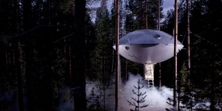 UFO treehouse in the woods with mist