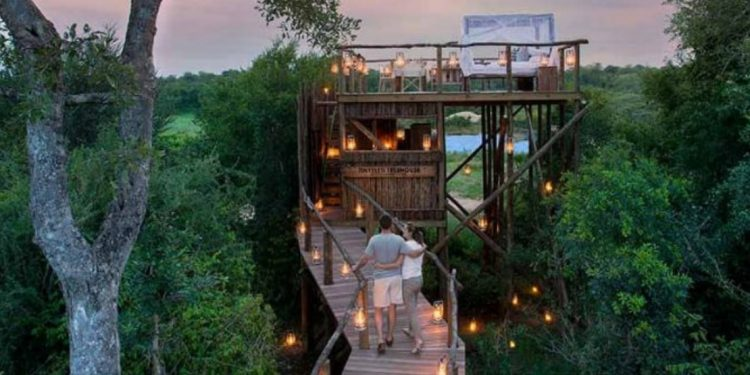 Walkway leading to open-air treehouse