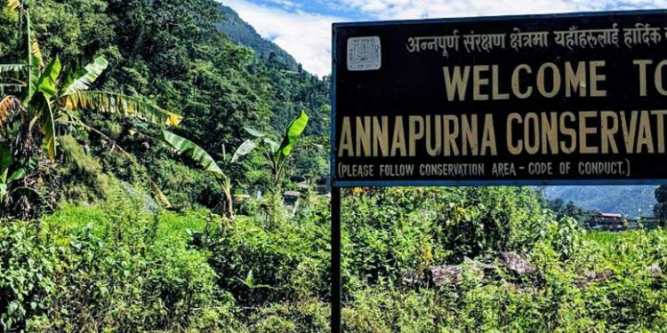 """Sign reading """"welcome to Annapurna Conservation Area"""" with jungle in background"""