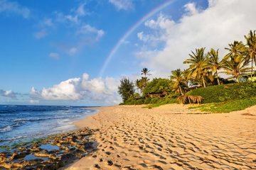 A sandy beach in Oahu