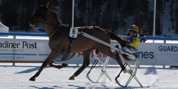 Jockey on a sled behind a horse