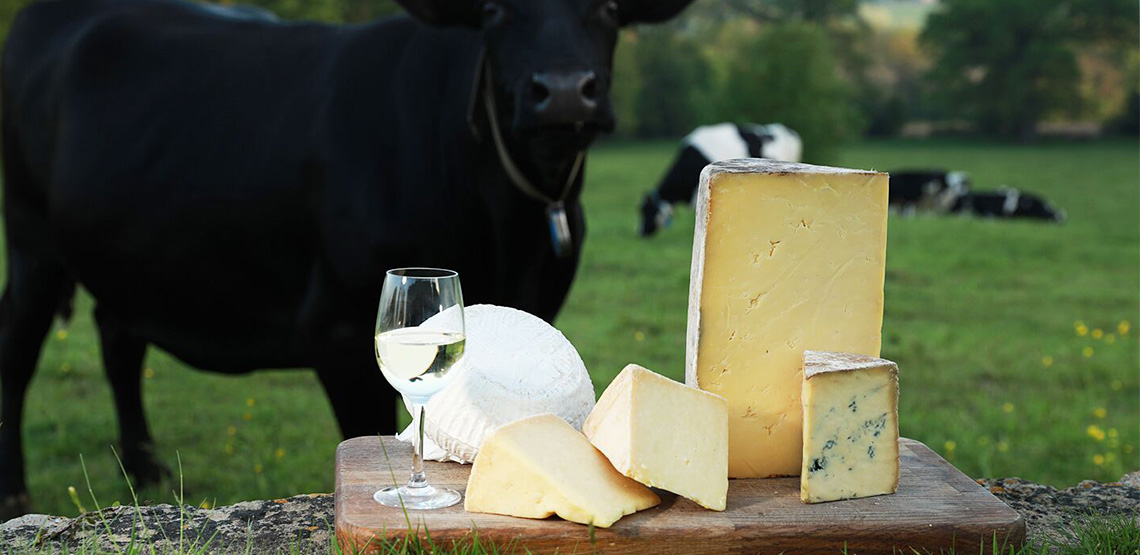 Cheese on cutting board with glass of wine and cows in background