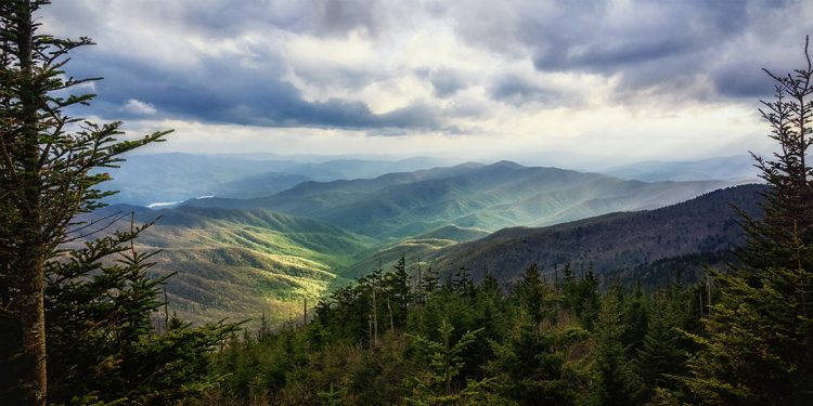 Looking out over valley in Great Smoky Mountains