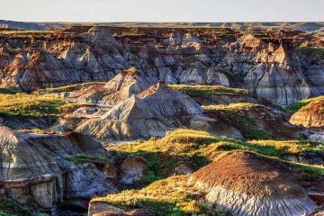 Overlooking the landscape of Dinosaur Provincial Park