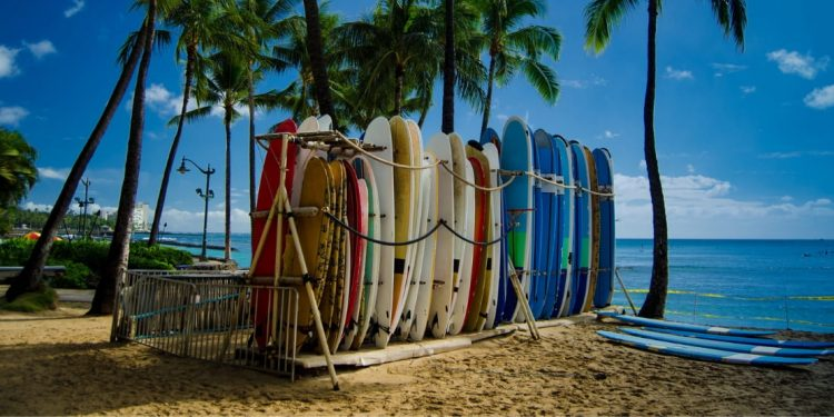 Beach in Hawaii with surfboards standing up