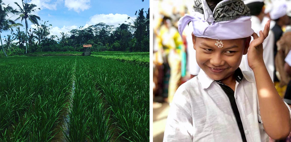 Rice paddies and a young Balinese boy
