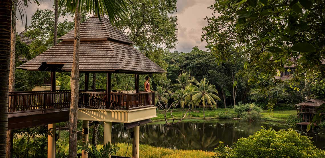 Gazebo overlooking pond in jungle