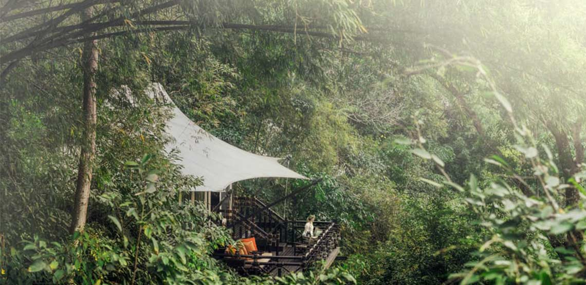 Tented camp in jungle