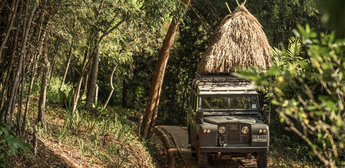 Jeep driving down road through the jungle