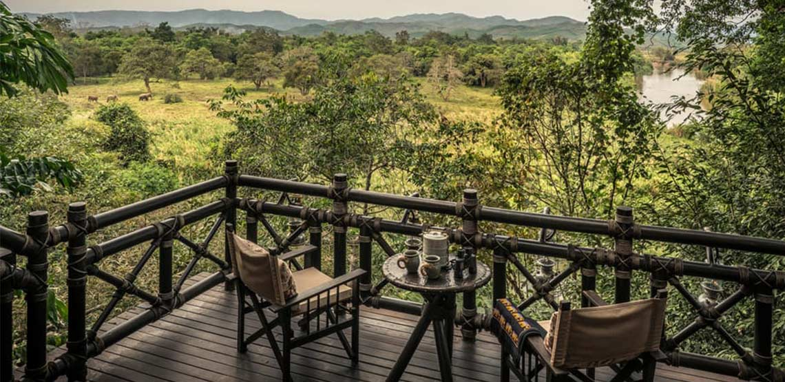 Terrace looking out over jungle with elephants walking