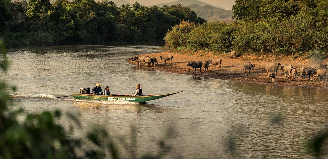 Boat cruising down river with water buffalo near edge