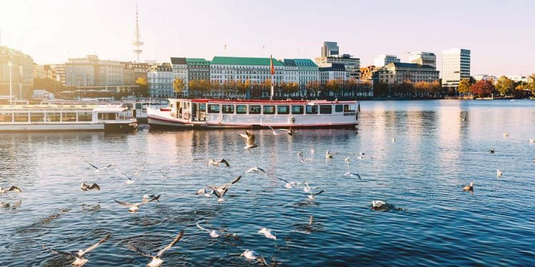 Seagulls speed by a riverboat in Germany