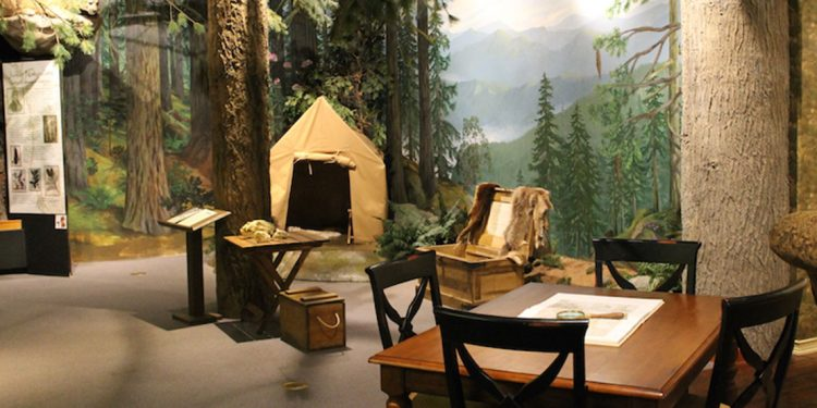 Table and chairs and tent at an exhibit