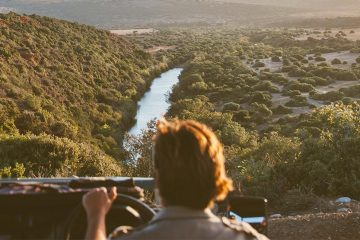 Person driving a jeep in Kruger National Park