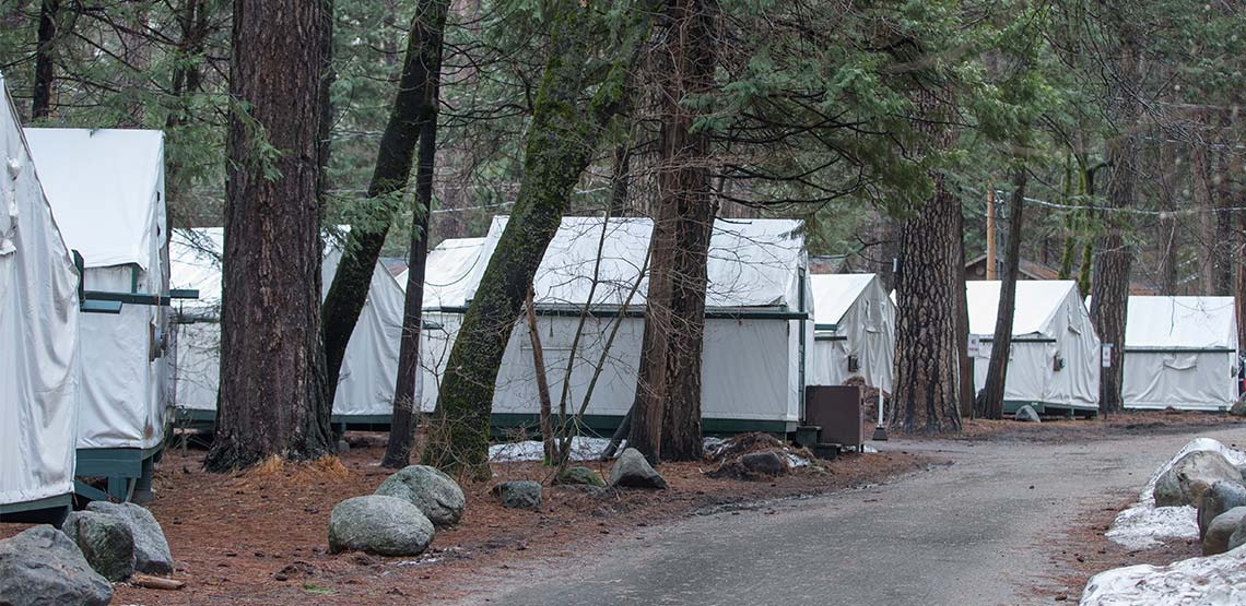Tent accommodations among trees
